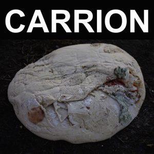 RECITATION - Carrion